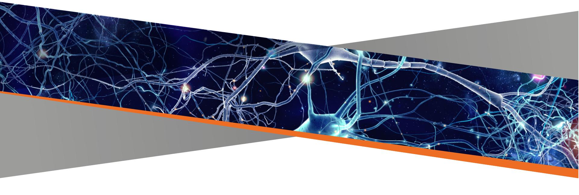 Kierunki strategicznego rozwoju polskiej neurologii